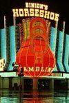 Отель и казино Binions